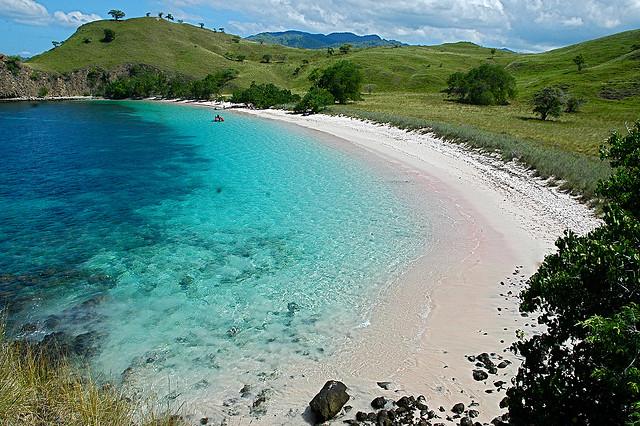 остров комодо индонезия