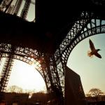 Лоукостеры в Париж: полный обзор
