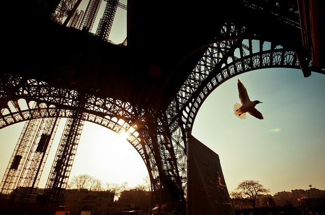 Лоукостеры в Париж