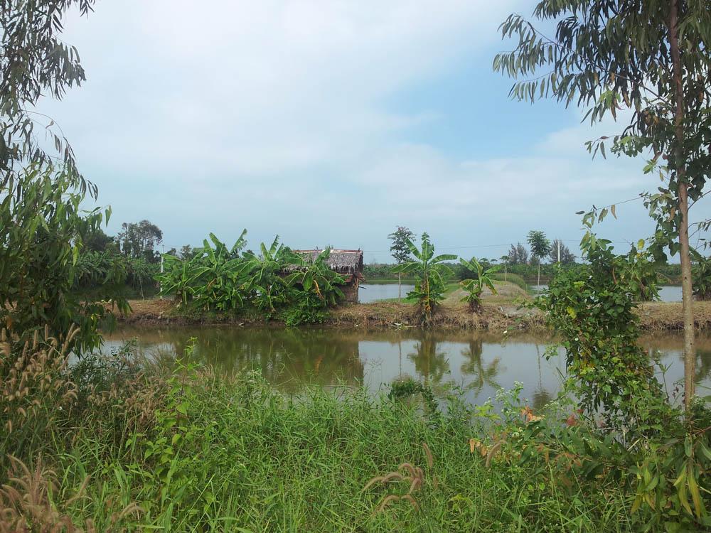 пейзажи вьетнама