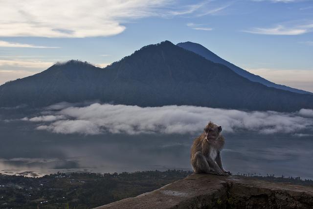 Бали: жить за копейки в раю