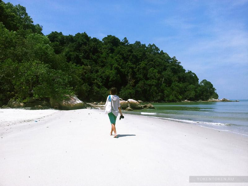остров пенанг джунгли лес лианы